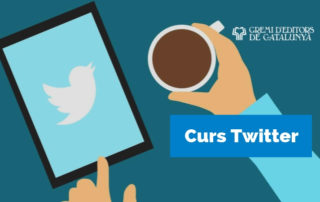 Curs Twitter